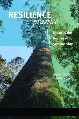 Resilience Practice By Walker, Brian/ Salt, David